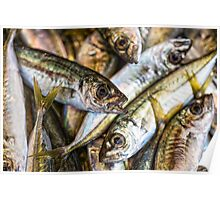 Tile of fishes Poster