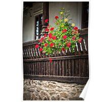 Balcony  geranium Poster