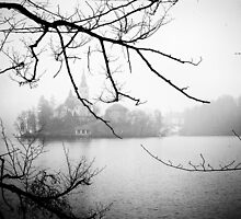 Lake Bled by Dobromir Dobrinov
