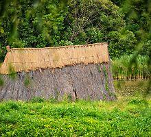 Old hut by Dobromir Dobrinov