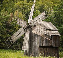 Wind mill by Dobromir Dobrinov