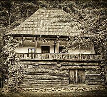 Rural house by Dobromir Dobrinov