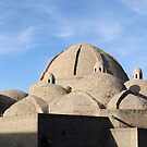 Bazaar Dome Skyline, Bukhara, Silk Road by Jane McDougall