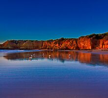 """Rocky Point Reflections"" by Phil Thomson IPA"