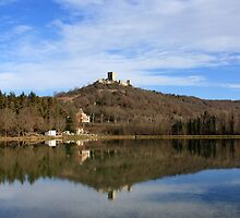 Puivert Castle (France) by garigots