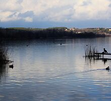Water peace - Banyoles (Catalonia) by garigots