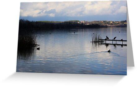 Water peace - Banyoles (Catalonia) by garigots