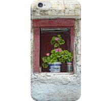 Flowers in the Window iPhone Case/Skin