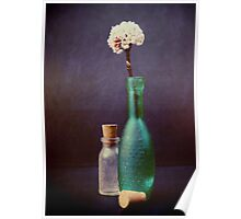 Glass bottles with winter blossom Poster