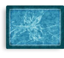 Pale Yellow Poinsettia 1 Outlined Blue Canvas Print