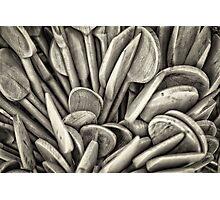 Wooden spoon Photographic Print