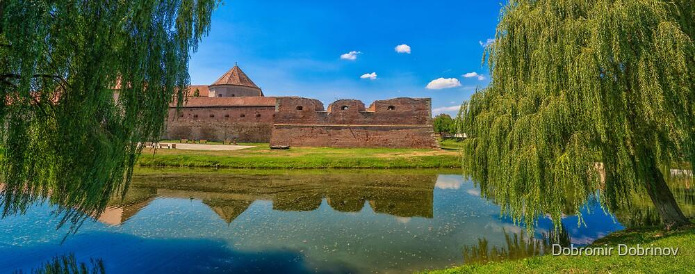 Fagaras fortress by Dobromir Dobrinov