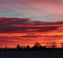 Winter Sky Fire by Keala