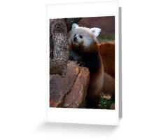 Learning to Climb Greeting Card
