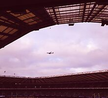 Plane. Twickenham. by Robert Steadman