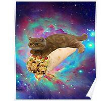 space burrito cat Poster