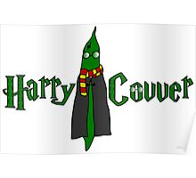 Harry Covver Poster