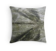 Ghost Dragonfly Throw Pillow