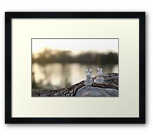 Bunny - Scenic Overlook at Sunset Framed Print