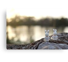Bunny - Scenic Overlook at Sunset Canvas Print