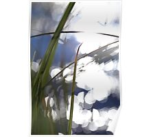 Grasses at the shore of a glittering lake Poster