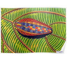 398 - MULTICOLOURED COCKROACH - DAVE EDWARDS - COLOURED PENCILS - 2014 Poster
