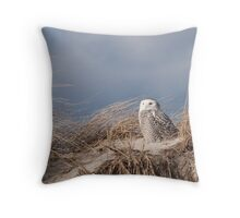 Snowy Owl on the lookout Throw Pillow