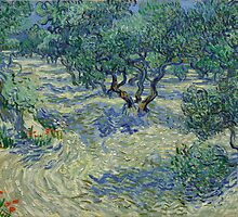 Vincent van Gogh - Olive Orchard by TilenHrovatic