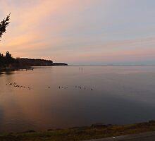 Sunset at the John Wayne Marina by Moonamie