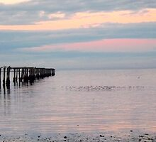 Dungeness Bay Old Pier by Moonamie