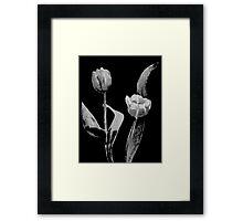 Artsy Tulips Framed Print