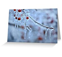 Frozen berries #2 Greeting Card