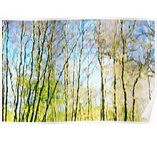 Tree Reflections Abstract Poster