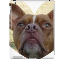 Red Nose Pit iPad Case/Skin