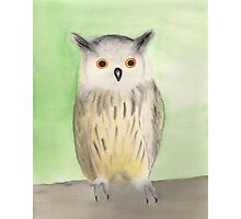 Dreamy owl watercolor Photographic Print