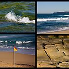 Seaside Snippets - Beachcomber Series by reflector