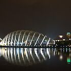 Garden By The Bay by kianhwee