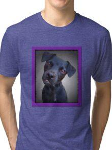 Cute Puppy Tri-blend T-Shirt