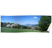 Flowering trees and rolling hills Poster