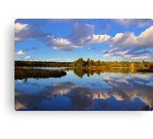 'The calm after the Storm'  - Forest of Dean  Canvas Print