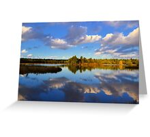 'The calm after the Storm'  - Forest of Dean  Greeting Card