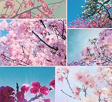 Spring Floral Collage Pink White Cherry Plum Peach Magnolia by Beverly Claire Kaiya