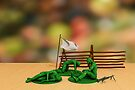 Toy Soldiers - Defeated by Liam Liberty