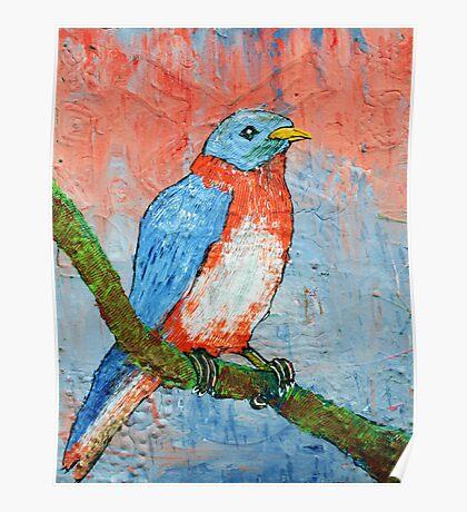 Blue Bird Beauty Poster