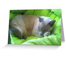 Sleeping Zoe Greeting Card