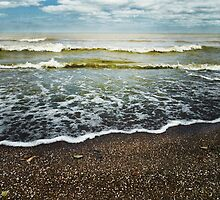 Lake Erie Lace by SRowe Art
