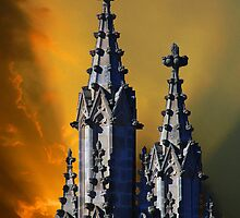 The National Cathedral by Daniel B McNeill