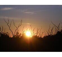 sunset at Tanonga Photographic Print