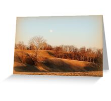 Today's Gold, Moonrise Before Sunset with Sycamore Tree Greeting Card