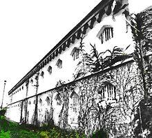 Addington Prison  by PictureNZ